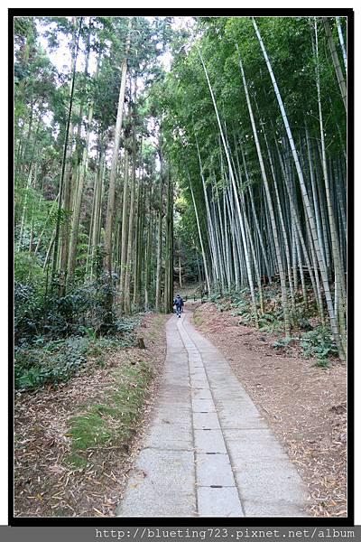九州佐賀《武雄神社》9.jpg