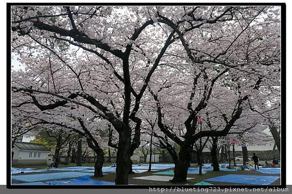 九州《小倉城》4.jpg