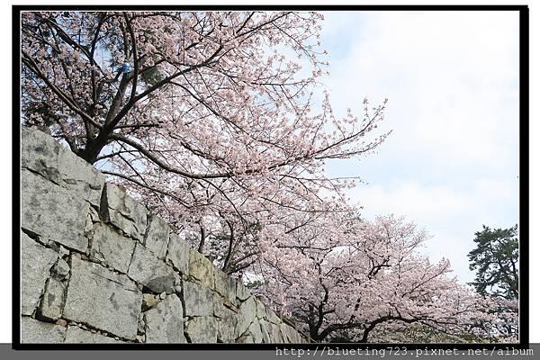 九州《小倉城》5.jpg