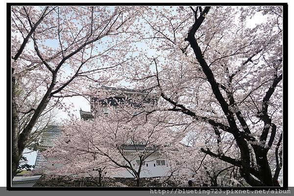 九州《小倉城》6.jpg