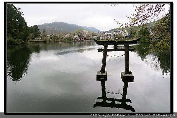 九州由布院《天祖神社》2水中鳥居.jpg