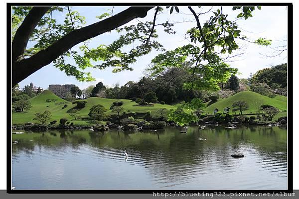 九州《水前寺成趣園》6.jpg