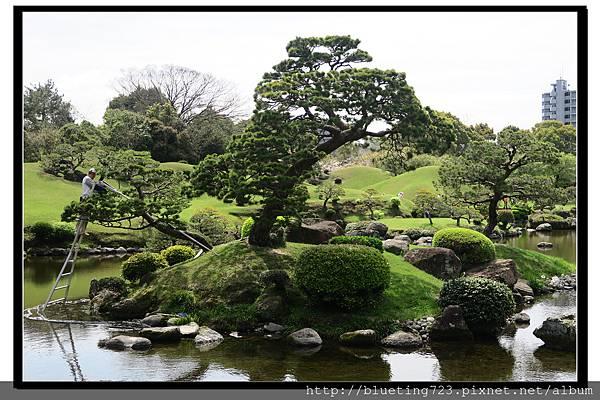 九州《水前寺成趣園》18.jpg