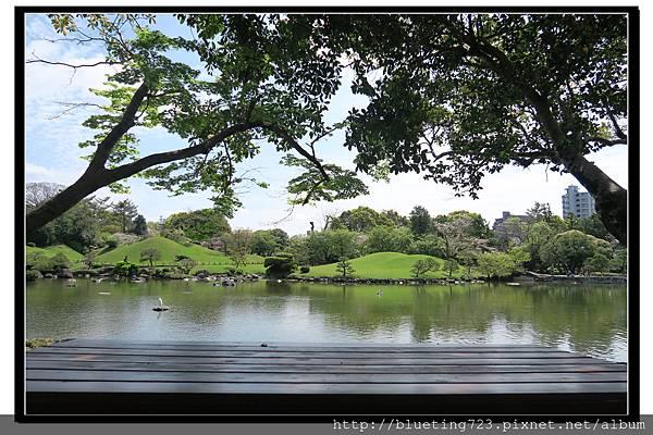 九州《水前寺成趣園》20.jpg