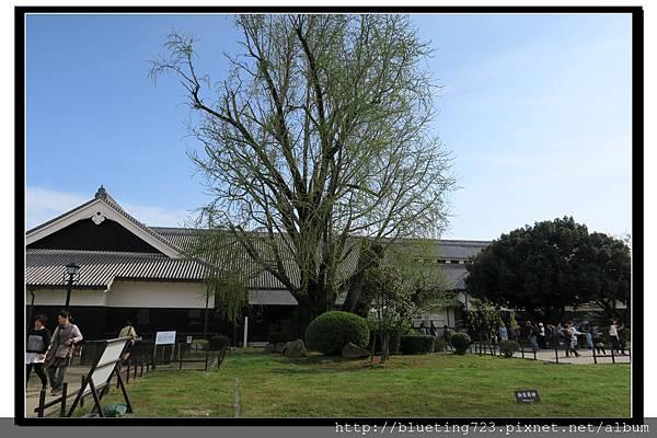 九州熊本《熊本城》24.jpg