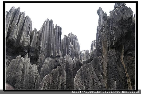 雲南《石林》9.jpg