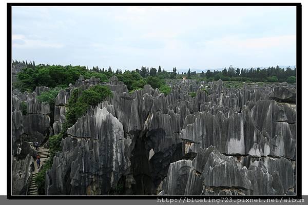 雲南《石林》11.jpg