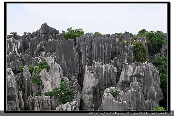 雲南《石林》13.jpg