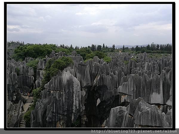 雲南《石林》14.jpg