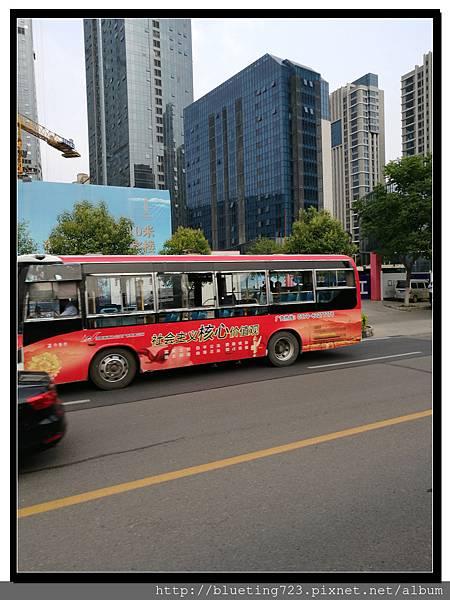 《洛陽公交車》4.jpg