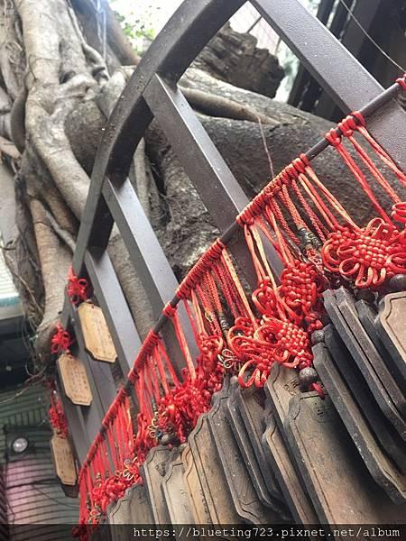 台南《國華街‧百年夫妻樹》.jpg