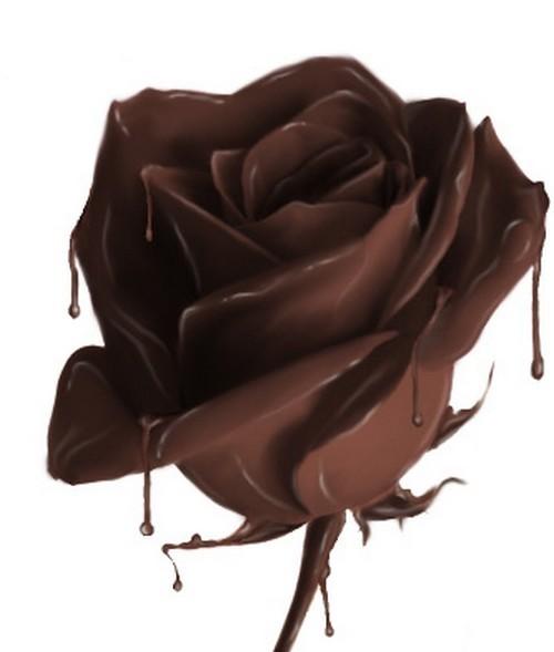 chocolate_rose_86193223.jpg