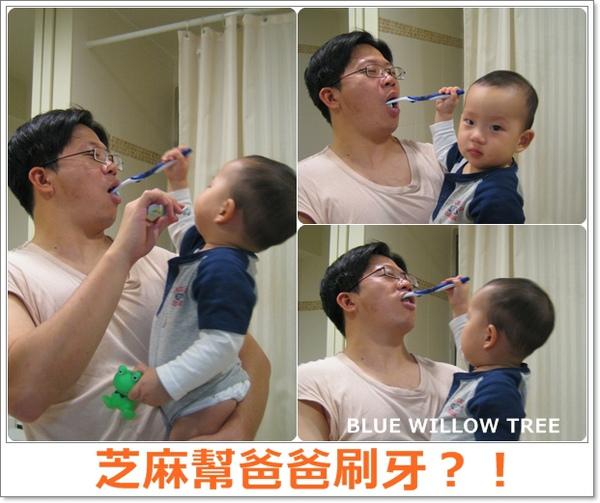 芝麻幫爸爸刷牙.jpg