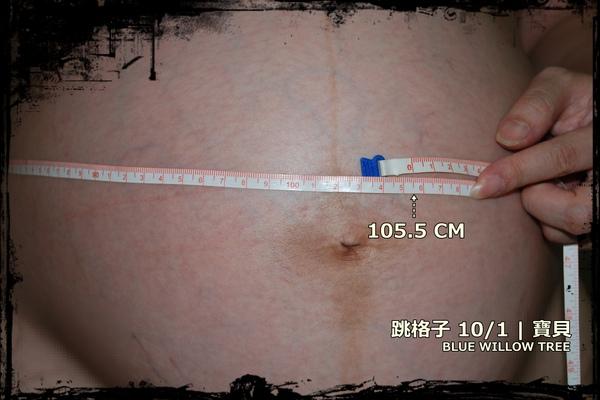 跳格子981001寶貝-4.jpg