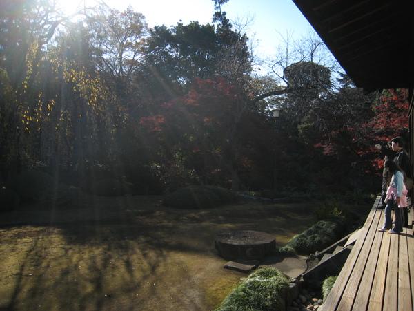 Honkawagoe 158.JPG