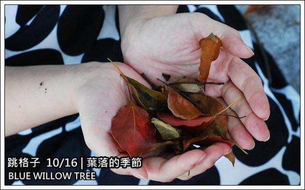 跳格子20091016-1.JPG