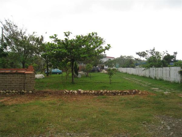 入口的小庭院