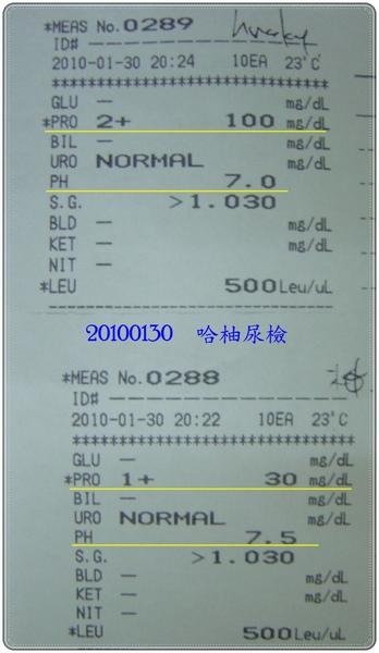 DSC08676-crop.JPG