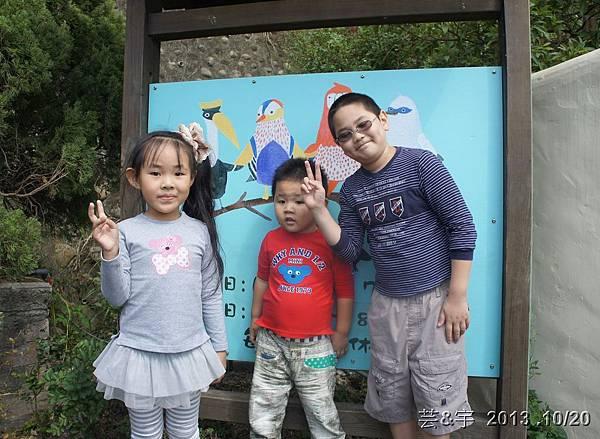 首烏 森林鳥花園 15.JPG
