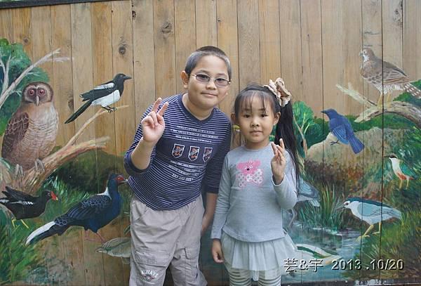 首烏 森林鳥花園 29.JPG