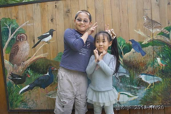 首烏 森林鳥花園 30.JPG