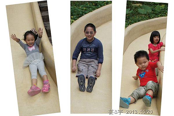 首烏 森林鳥花園 34.jpg