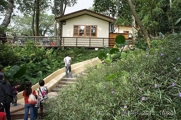首烏 森林鳥花園 33.JPG