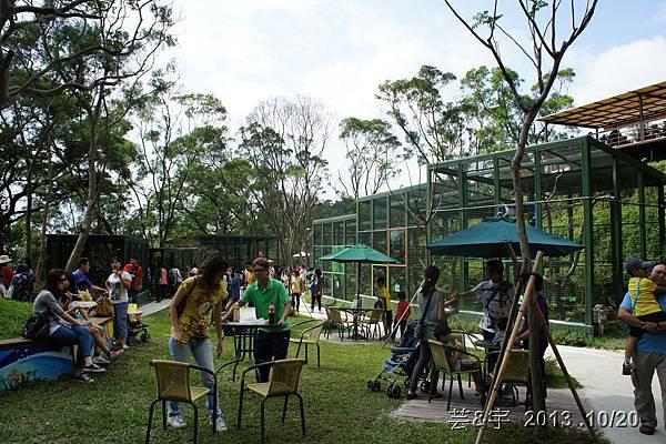首烏 森林鳥花園 38.JPG