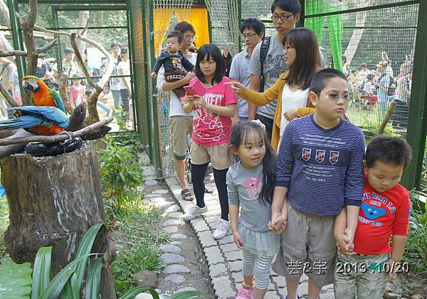 首烏 森林鳥花園 52.JPG