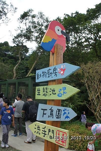 首烏 森林鳥花園 63.JPG
