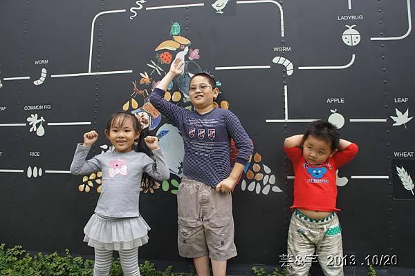 首烏 森林鳥花園 64.JPG