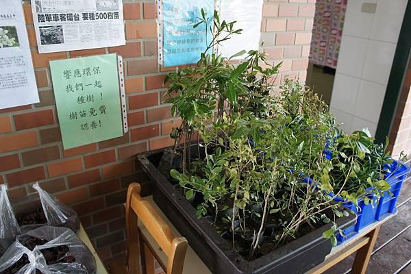 沙發后花園28.JPG