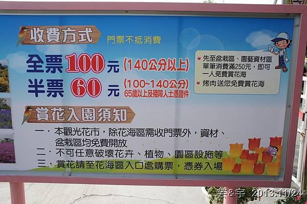 中社花市中社花海43.JPG