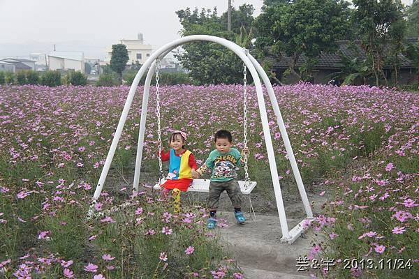 中社花市中社花海84.JPG