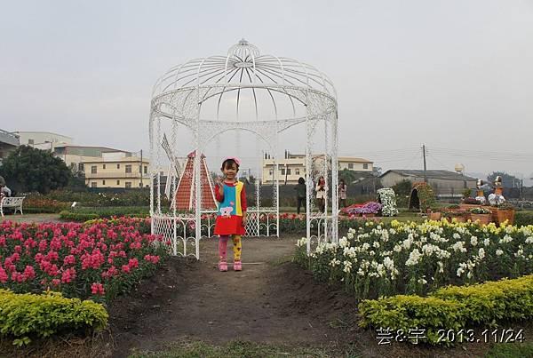 中社花市中社花海101.JPG