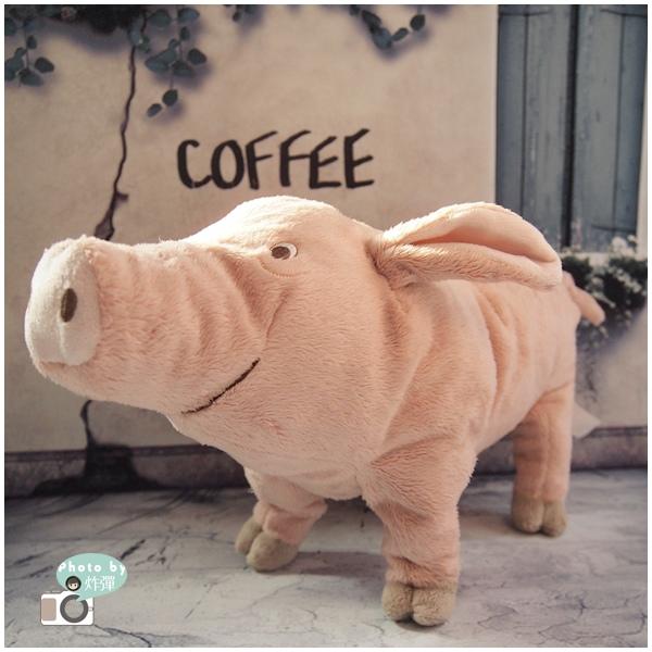 豬豬2.jpg