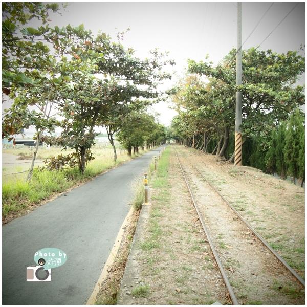 台糖五分車鐵道2.jpg