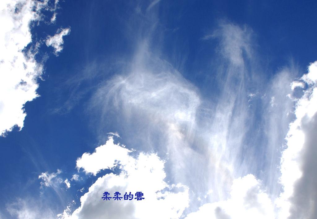 DSC_1719-001