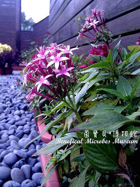 C360_2012-02-18-15-24-42_org.jpg