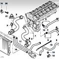 Engine Cooling System - Hoses.png