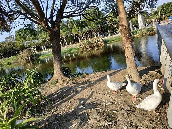 農博公園_201120_14.jpg