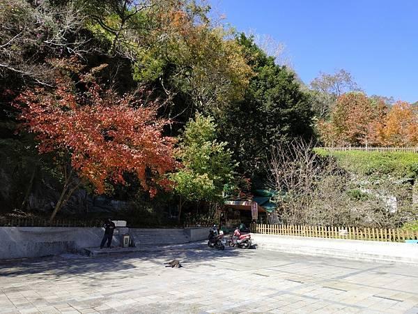 天祥步道梅園_210114_11.jpg