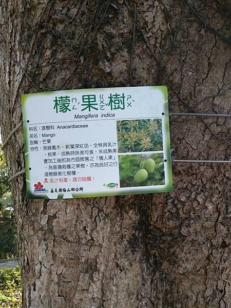 梅山公園_210217_8.jpg