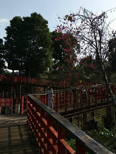 梅山公園_210217_14.jpg