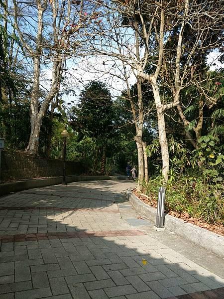 梅山公園_210217_20.jpg