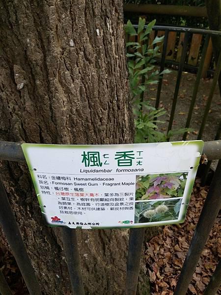 梅山公園_210217_22.jpg