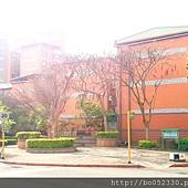 A 社區街景4.jpg