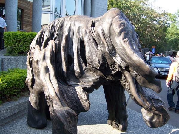 來到三義木雕館前的大象..真帥