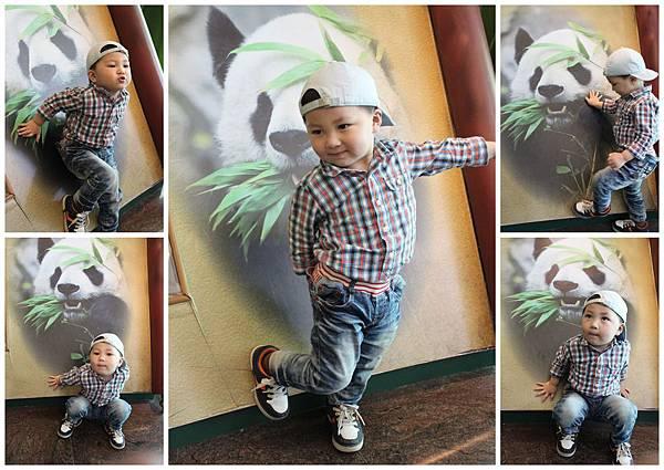 是我可愛還是Panda可愛呢