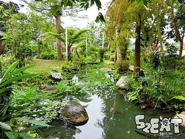 食記雨村生態農場8.jpg